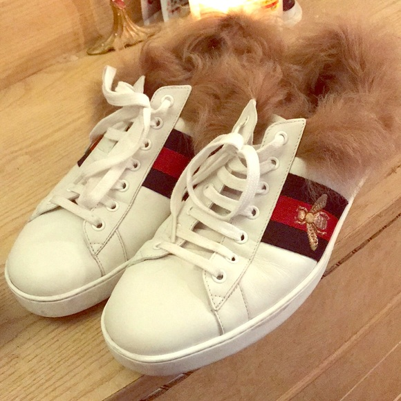 2c88ee5a890 Authentic Gucci Ace Sneaker with Wool
